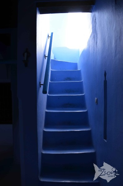 The stairs to our room #Riad #Chefchaouen #Morocco